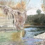 fiume-ambrogio
